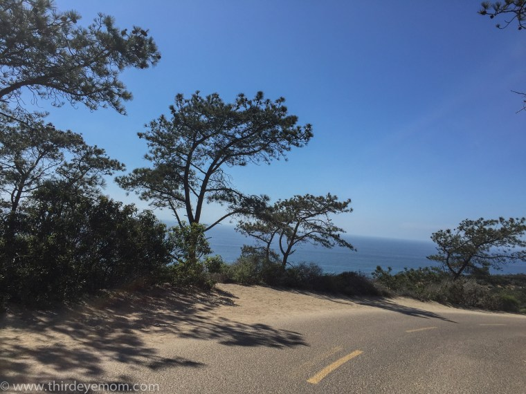 Torrey Pines Reserve San Diego CA