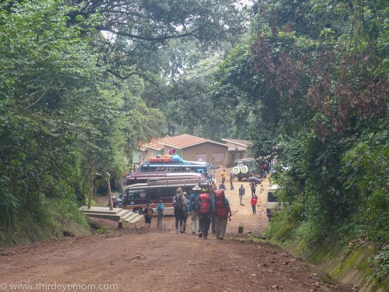 View descending Kilimanjaro