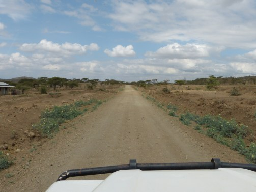 The land is becoming more dry and barren,