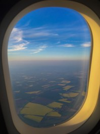 View of the rapeseed fields from the plane