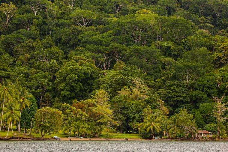 Unspoiled coasline in Costa Rica's Osa Peninsula. Photo credit: Lokal Travel