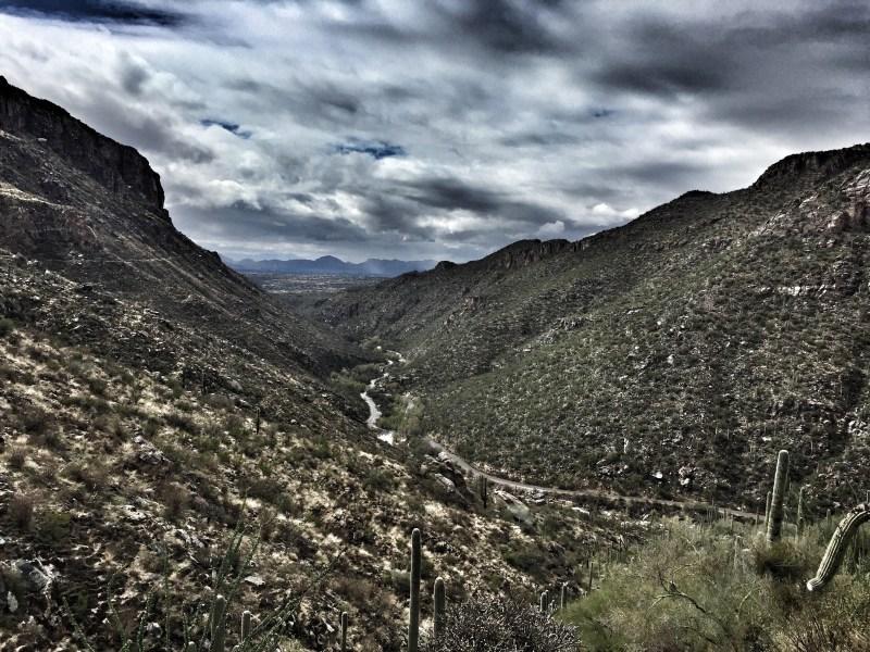 Sabino Canyon, Tucson, Arizona