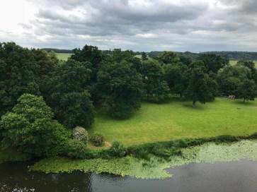Lush greenery