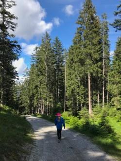 Hiking in Seefeld Austria