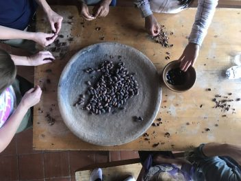 Cacao beans. Photo credit: Tricia Hall