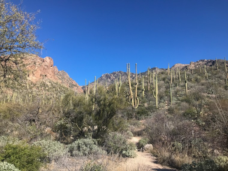 Ventana Canyon Trailhead, Tucson, Arizona