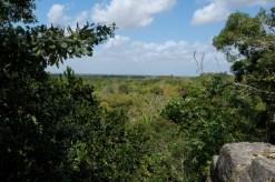 High Temple Lamanai Belize