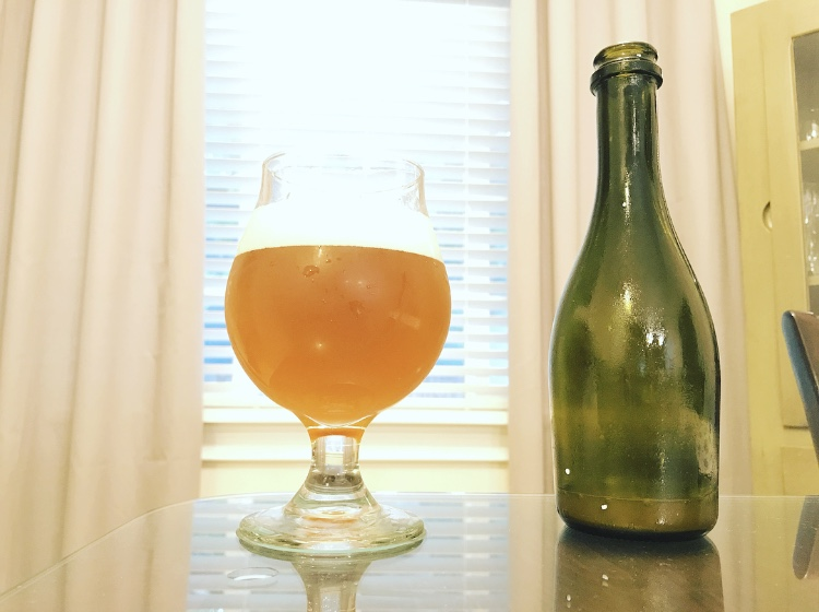 Back East New England IPA With Bootleg Biology Chardonnay Culture