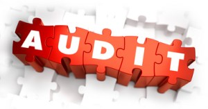 Audit - White Word on Red Puzzles on White Background. 3D Illustration.