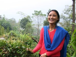 Building Tea Back Better through Sustainable Business Models