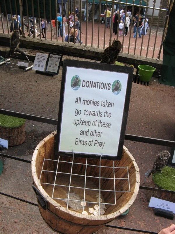 birds of prey donation basket, New Lanark
