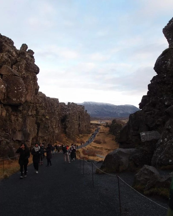 Thingvellir trail walk