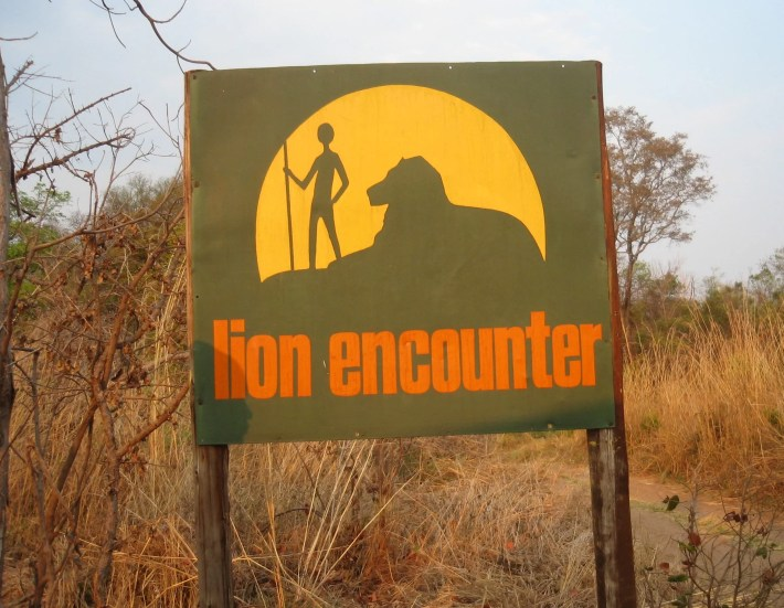 Lion Encounter sign Zimbabwe