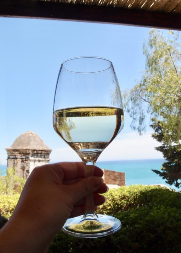 glass of wine with ocean in the background