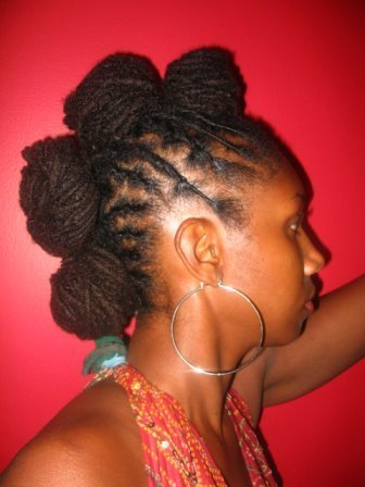 Dreadlocks Or Locs Rolled Knots Updo Hairstyle