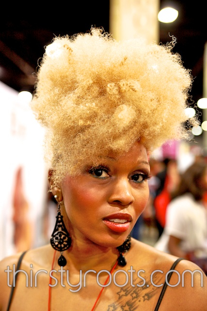 African American Natural Hair Pictures