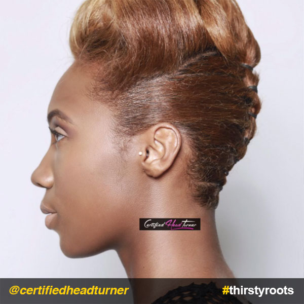 Retro-Victory-Roll-updo-natural-hairstyle-side-view