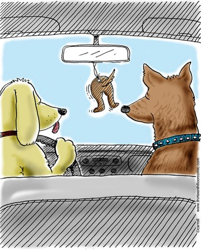 Dog Air Freshener Gifts