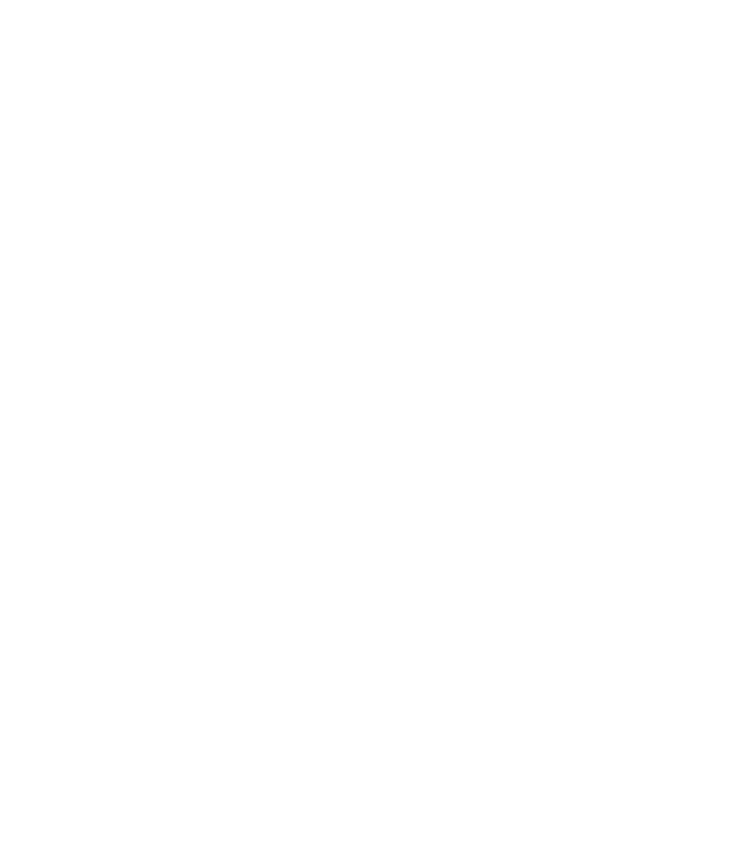 "Petzl ""Carry the Torch"""