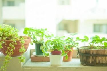 出窓をインテリアと収納に有効活用するコツとアイデアを紹介