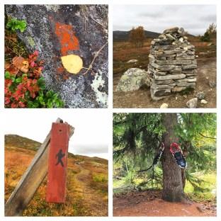 saturday-hiking-collage
