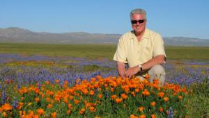 howser-huell-poppies