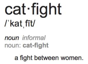 cat-fight-definition