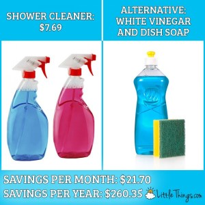 Save Over $800 Yearly on Household Products