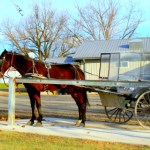 Visiting an Amish Paradise in Kalona Iowa