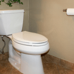 How to Clean a Toilet the Right Way