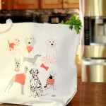 Must-Have Products for Pet Owners & Giveaway