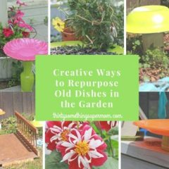 Crafty Ways to Repurpose Old Dishes In the Garden