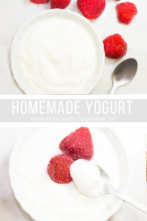 Homemade SCD Yogurt