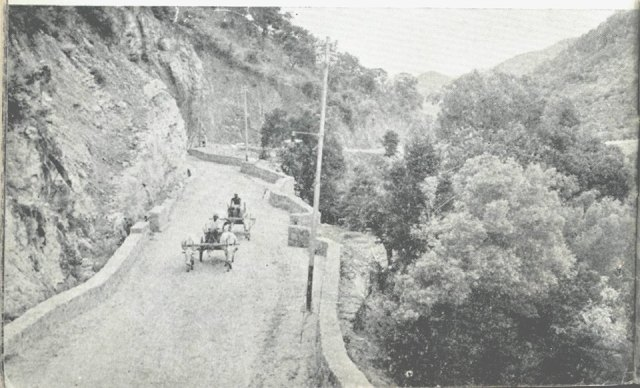 Devotees taking ride through the bullock cart to the temple on Tirumala ghat road.