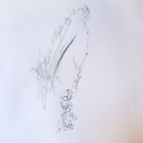 Teenagers Blind Drawing of a feather