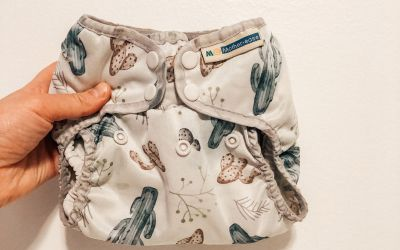 Mother Ease Wizard Duo Cloth Diaper Review