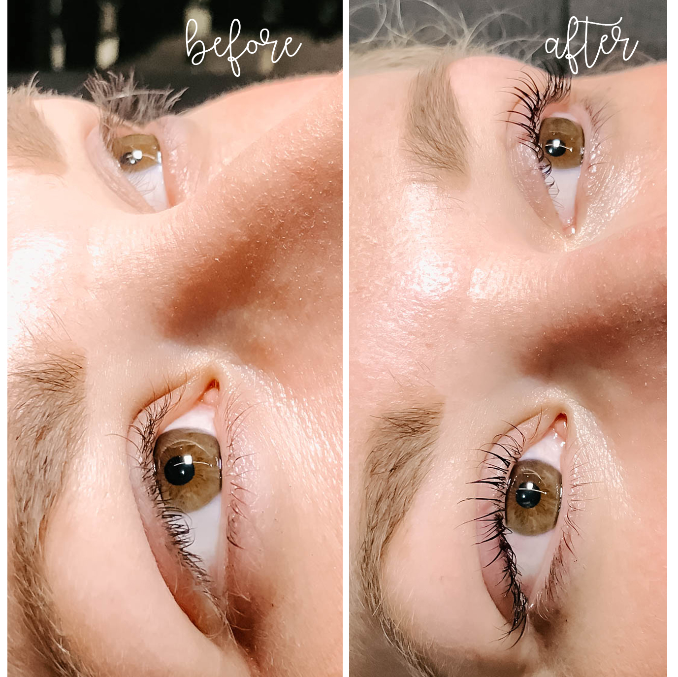 Lash Lift + Tint (everything you want to know)