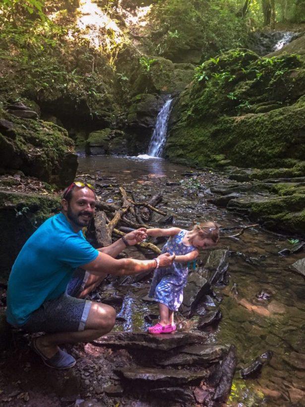 Greyfield woods waterfall near bristol
