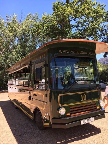 Wine tram - How to win at wine tasting in South Africa