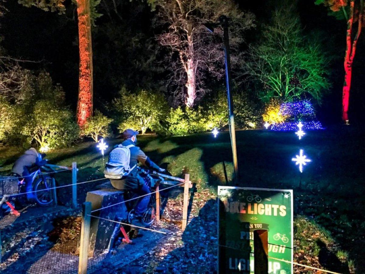 Westonbirt arboretum - bike glow