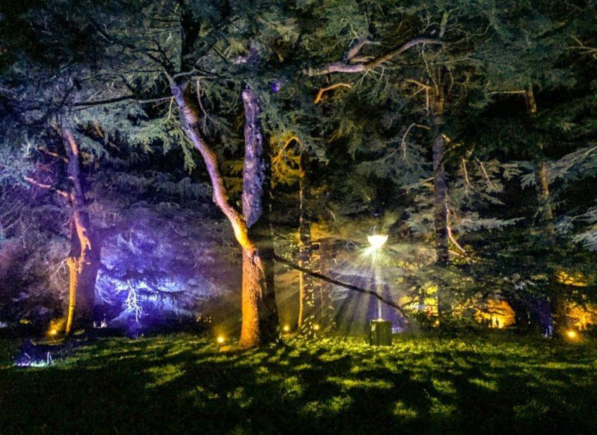Westonbirt Arboretum Enchanted Christmas festival of lights