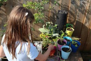 Gardening in self-isolation
