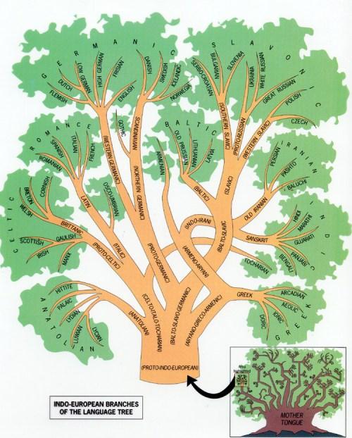 indoeuropean-language-family-tree