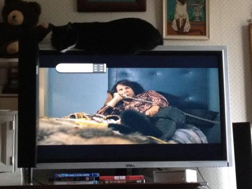Sleeping on the TV