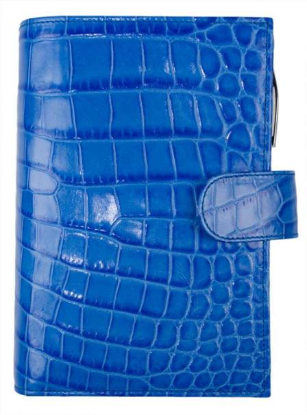 Royal Blue Shiny Croc. Photograph belongs to Gillio