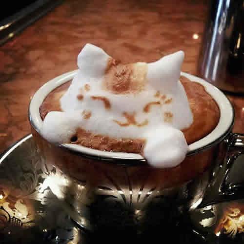 latte_art_cat_in_coffee_3