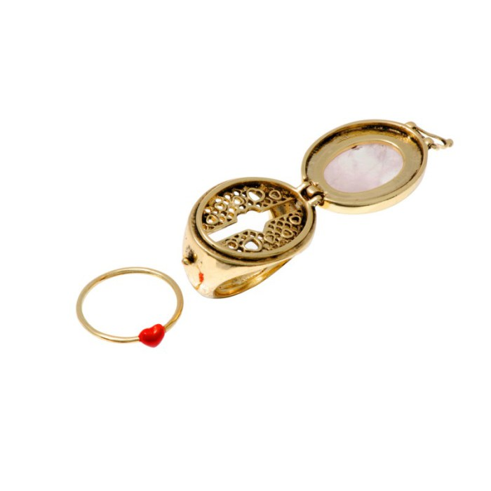 beau-brut-et-brillant-secret-ring-21