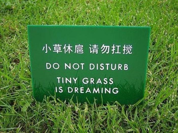 Funny-Chinese-Mistranslation-11