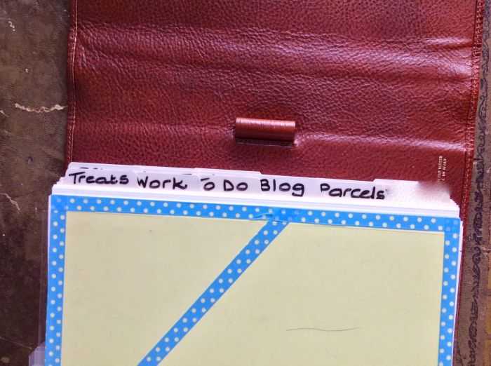 I just used blank dividers and wrote on them with a CD divider. My categories are: Treats, Work, To Do, Blog, Parcels, Mark, Sites, 2015, Lessons, Hours