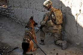 Army 1st Sgt. Brian Zamiska provides security with an Air Force military working dog during a January patrol with members of the Afghan Border Police in the Tera Zeyi district, Afghanistan. Army photo by Specialist Alex Kirk Amen